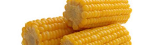 Mais- Ethanol